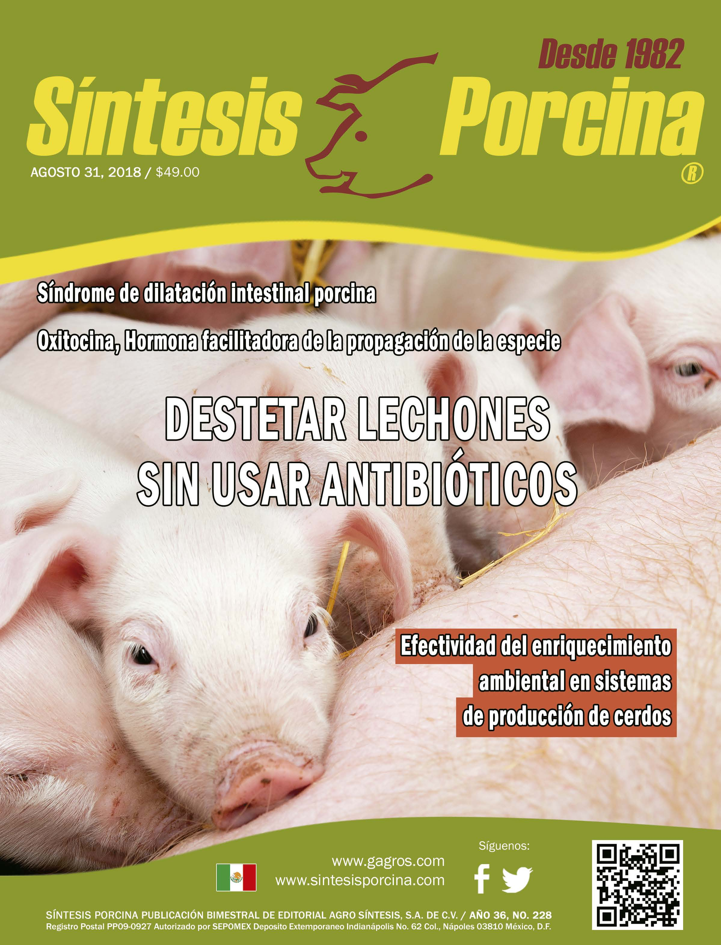 Síntesis Porcina, Revista Digital Agosto 2018